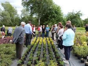 Heinäkuussa 2013 tehtiin kesämatka Viroon, jossa tutustustuttiin kasvitieteellisiin puutarhoihin sekä tehtiin taimiostoksia. Kesälle 2014 yhdistys suunnittelee puutarhamatkaa Berliiniin.