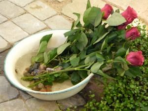 'Salainen puutarha'