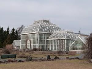 Kaisaniemen kasvitieteellisen puutarhan kasvihuone.